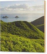 Lanikai Hills Wood Print by Dana Edmunds - Printscapes