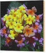 Lantana Flower Chips Wood Print