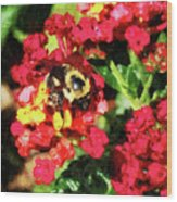 Lantanas And The Bee Wood Print