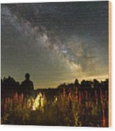 Lantern In The Lupines Wood Print