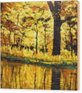 Lanterns Of Gold Vi Wood Print