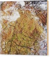 Laplash Falls Wood Print