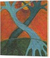 Lapse Wood Print