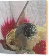 Large Bumble Bee In Flower Wood Print