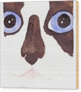 Large Eyed Cat Oswoa Wood Print by Christine Callahan