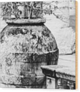 Large Flowerpot - Black And White Wood Print