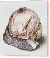 Large Hyatid Cyst In Spleen Wood Print