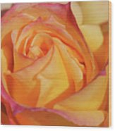 Large Peace Rose Center 006 Wood Print