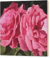 Large Pink Roses Wood Print