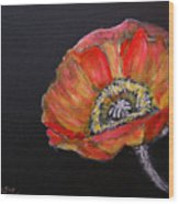 Large Poppy Wood Print
