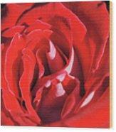Large Red Rose Center - 003 Wood Print