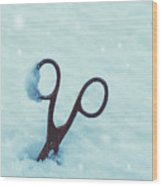 Large Scissors In Snow Wood Print