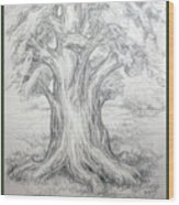 Large Shady Tree Wood Print