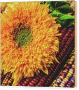 Large Sunflower On Indian Corn Wood Print