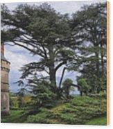 Large Trees At Chateau De Chaumont Wood Print