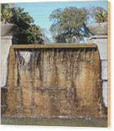Large Water Fountain Wood Print