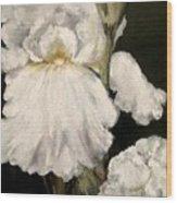 Large White Iris Wood Print