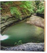 Lasalle Canyon Pool Wood Print