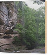 Lasalle Canyon Starved Rock State Park Wood Print