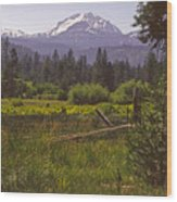 Lassen Peak Summer Wood Print