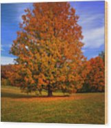 Last Call Of Fall Wood Print