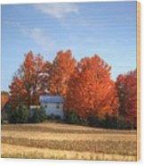 Last Color On The Farm Wood Print