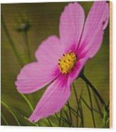Last Flower Wood Print