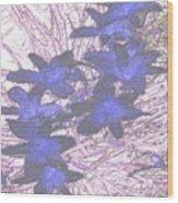 Last Frozen Flowers Wood Print