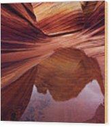 Last Glance Wood Print