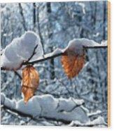 Last Leaves Wood Print