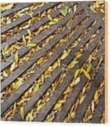 Last Rays Of Summer Wood Print