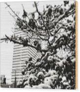 Last Snow Fall  Wood Print