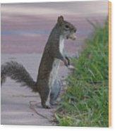 Last Squirrel Standing Wood Print