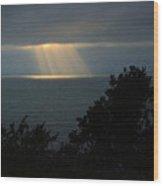 Last Sunbeams Of The Day Wood Print