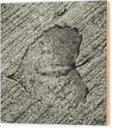 Lasting Impression  Wood Print