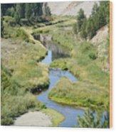 Latah Creek Wood Print