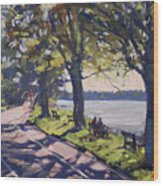 Late Afternoon At Niawanda Park Wood Print