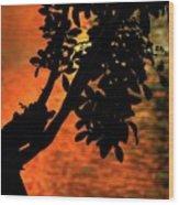 Late Afternoon Lake Reflection Wood Print