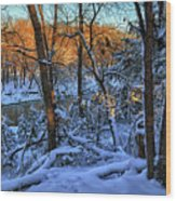 Late Afternoon Winter Light Wood Print