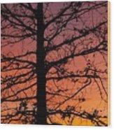 Late Autumn Sunset Wood Print