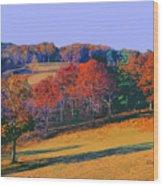 Late Fall Biltmore Estates Wood Print