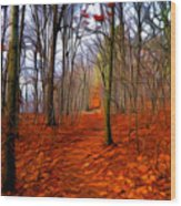 Late Fall In The Woods Wood Print