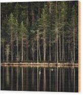 Late Loons Wood Print