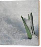 Late snow Wood Print