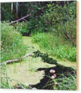 Late Summer At The Creek Wood Print
