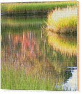 Stillness Of Late Summer Marsh  Wood Print
