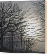 Late Winter Afternoon Wood Print