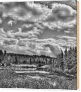 Late Winter At The Tobie Trail Bridge 2 Wood Print