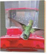 Later Hummingbird Wood Print