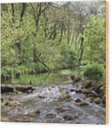 Lathkill River Wood Print